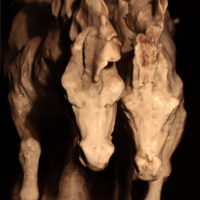Cavalli in corsa, particolare